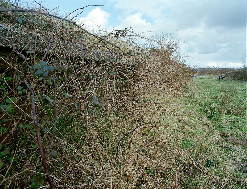 The Whistle Blowing / Connemara Railway